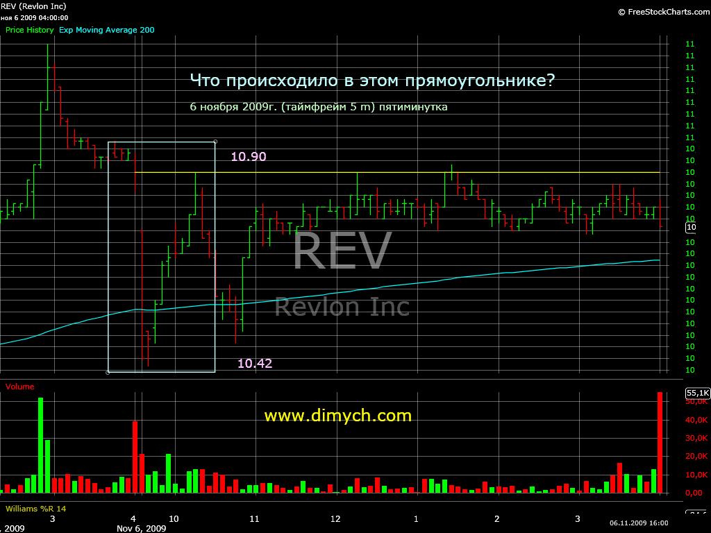REV-5m
